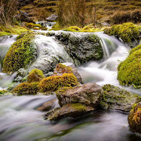 Moorland Stream by Darrell Evans - Landscapes Waterscapes ( water, moorland, stream, green, moors, moss, stone, beck, flow, rocks, river )