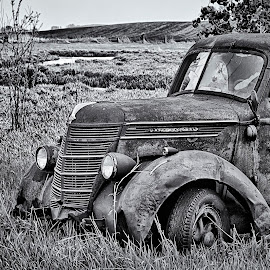 Retired by Dale Minter - Transportation Automobiles ( field, stream, pickup, black and white, international, old truck, abandoned )