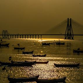 3B.. boats, birds and bridge by Hariharan Venkatakrishnan - Landscapes Waterscapes