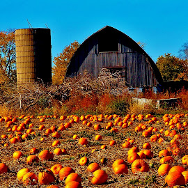 Harvest Time by Jim Massey - Novices Only Landscapes ( wisconsin, barn, calender art, pumpkins, agriculture, harvest, landscape, silo, halloween )