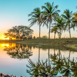 Early Morning with coconut palms ..  by Rqserra Henrique - Landscapes Sunsets & Sunrises ( water, brazil, dawn, rqserra, reflections, morning, sun )