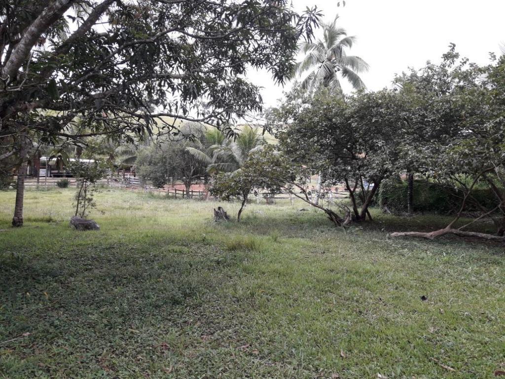 Fazenda / Sítio à venda em Werneck, Paraíba do Sul - RJ - Foto 9
