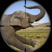 Game Wild Elephant Hunting Attack apk for kindle fire