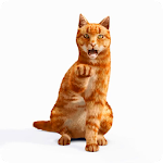 Play with 3D Cat LiveWP APK Image