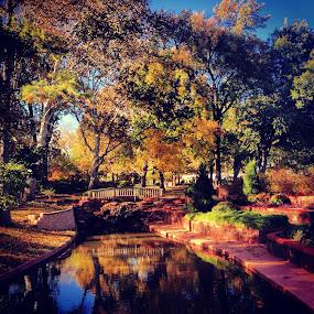 Will Rogers Park at peak week  by Stephanie Hampton - Landscapes Prairies, Meadows & Fields ( water, park, outdoors, fall, bridge )