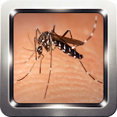 App Mosquito Sound Collection apk for kindle fire