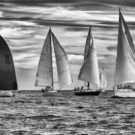 Sailboat at Finish Line by Carl Albro - Black & White Sports ( clouds, sailboats, black and white, racing )