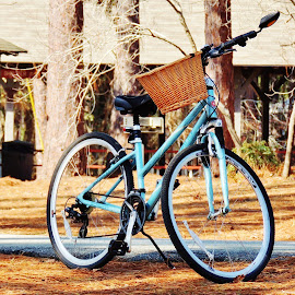 My bike by Mary Gallo - Transportation Bicycles (  )