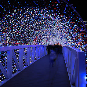 Christmas Light Bridge by Jerry Ehlers - Public Holidays Christmas ( lights, broken arrow, rhema bible school, oklahoma, christmas, display, bridge, tunnel,  )