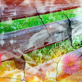 Fire Bench by Cecilia Sterling - Digital Art Things