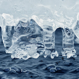 Under the ice by Ad Spruijt - Nature Up Close Other Natural Objects