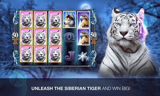 Slots Super Tiger Casino Slots - screenshot