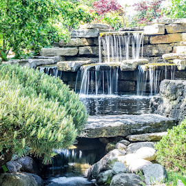Botanical Garden Waterfall by Jason Lockhart - City,  Street & Park  Fountains ( rotary gardens, wisconsin, janesville, japanese garden, waterfall, plants )