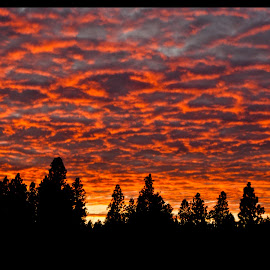 Sunset by Kathleen Stefanski - Landscapes Cloud Formations ( nature, lava, sunset, outdoors, landscape,  )
