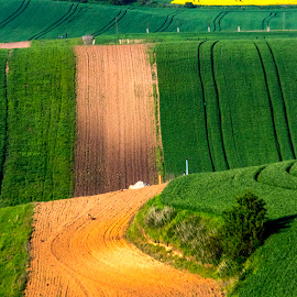 Mosaic... by Stanley P. - Landscapes Prairies, Meadows & Fields ( moravia, landscape, fields, colours )