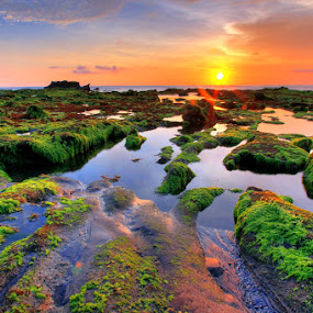 Low Tide at Mengening by Alit  Apriyana - Landscapes Waterscapes ( bali )
