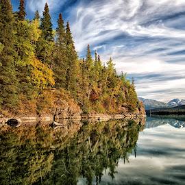 Kenai lake by Maria Yudin - Landscapes Waterscapes ( water, waterscape, forest, lake, landscape )