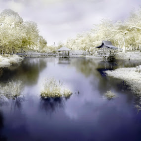 Tasek Serubing by Mohamad Sa'at Haji Mokim - Landscapes Waterscapes ( water, infrared, trees, landscape, place )