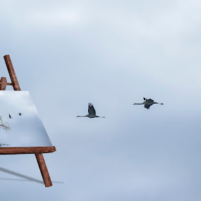 The fly by Daly Sda - Digital Art Things ( fantasy, birds,  )