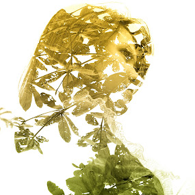 She ..  by Aditya Nugraha - Digital Art Abstract
