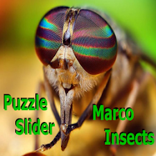 Puzzle Slider Macro Insects