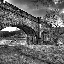 River Wharfe near Bolton Abbey, England by Keith's Captures - Landscapes Prairies, Meadows & Fields ( water, dales, raw, full frame, uk, b&w, river wharfe, black & white, yorkshire dales, people, jpg, england, bolton abbey, d750, yorkshire, wide angle, bridge, nikon, nef )