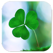 App Clover Lucky grass version 2015 APK