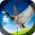 Game Duck Hunting Season 3D apk for kindle fire
