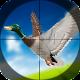 Duck Hunting Season 3D
