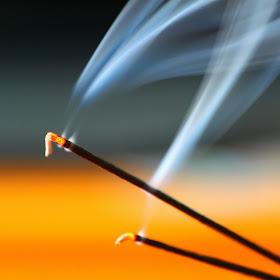 incense stick 9-25-2013  IMG_2446.JPG