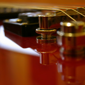 Red Epiphone by Daniela Murat - Artistic Objects Musical Instruments ( object, musical, instrument,  )