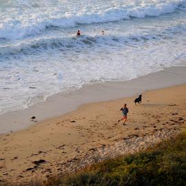 Fistral Beach in Summer by DJ Cockburn - Landscapes Beaches ( britain, woman, cornwall, fistral beach, dog walker, summer, sea, wave, running, swimming, uk, pet, fistral bay, surf, england, coastline, dune, recreation, shore, swimmer, coast, sand, newquay, ocean, seaside, atlantic ocean, dog )