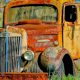 Bright Guy by Barbara Brock - Transportation Other ( orange truck, abandoned truck, decaying vehicle, old truck )