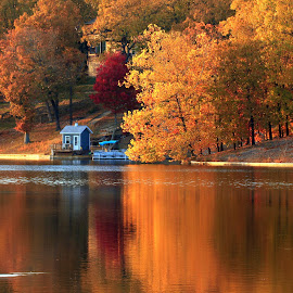 FALL REFLECTIONS by Dana Johnson - Landscapes Waterscapes ( autumn, waterscape, fall, trees, reflections, lake, landscape )