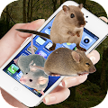 Free Mouse On Screen : Scary Joke APK for Windows 8