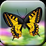 Butterflies Catch Craze 3D Icon