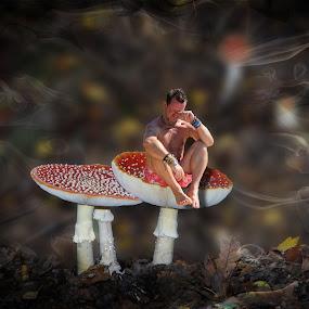 Naughty Step by JCstudios by John Cuthbert - Print & Graphics All Print & Graphics ( mushroom, cheeky, fungi, laugh, naughty, canvas. wall art, fairy, funf, jcstudios, fun, elf, Mushroom )