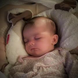 Sleeping Beauty by Rick King - Babies & Children Babies ( girl, granddaughter, sleeping, baby, newborn )
