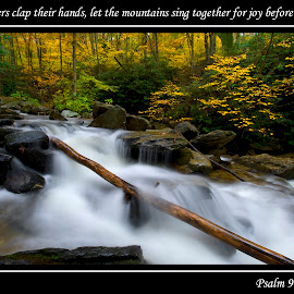 Psalm 98:8-9 by Steven Faucette - Typography Captioned Photos ( psalms, scripture, waterfall, fall, blue ridge parkway )