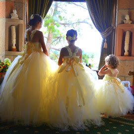 Flower Girls by Michael Smith - Wedding Other ( girls, wedding, dress up, children, flower girls )