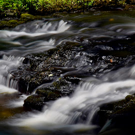 Black Marble by Santford Overton - Landscapes Waterscapes ( landscapes, adventure, places, waterscapes, leaves, light, nature, longexposure, portraits, river, travel, water )