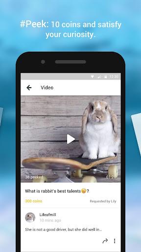 Petstar: fan of puppy & kitten - screenshot