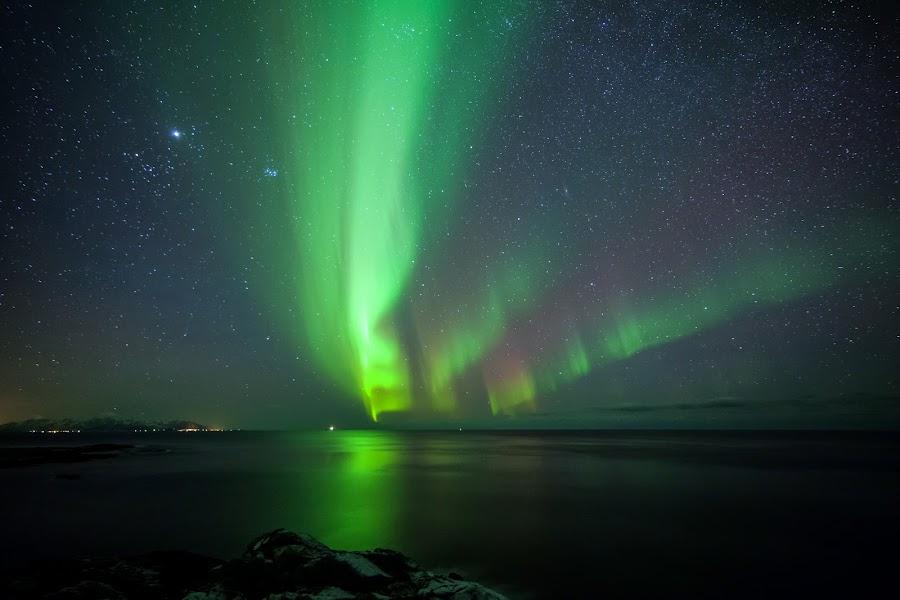 Aurora dancing over sea by Benny Høynes - Landscapes Starscapes ( canon, 5dmk2, bennyhøynes, northernlights, aurora, boreoalis, andøy )