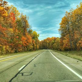 Pure Michigan Fall2017 by Patti Pappas - Transportation Roads ( 2017, fall, trees )