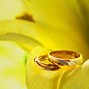 The Bond by Ellen Foulds - Wedding Other ( wedding ring, wedding, rings, yellow, gold )