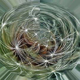 DPC 14 by Michael Moore - Digital Art Abstract