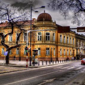 Sombor Preparandija by Zeljko Secujski - Landscapes Travel ( srbija, preparandija, serbia, sombor, building street )