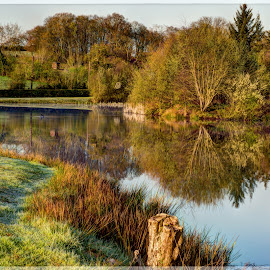 A good reason to get up early by Stephen Crawford - Nature Up Close Trees & Bushes ( calm, peaceful, grass, bushes, loch jess, uplifting, trees, reflections, sunrise, annbank,  )