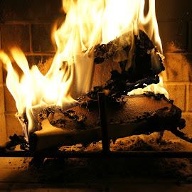 Fireplace by Tatiana Chaput - Artistic Objects Other Objects ( log wood, wood, firepit, fireplace, fire )