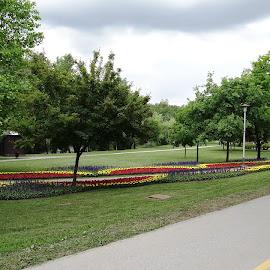 Grooming park ..... by Dubravka Penzić - City,  Street & Park  City Parks